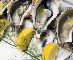 oysters with saffron and fennel